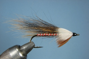 Roxey's Gray Squirrel Tail